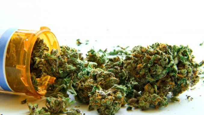medical-cannabis-weed