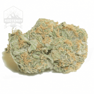Twisted Citrus (50% Sativa, 50% Indica, THC 24%+)