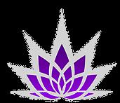 shop lotus