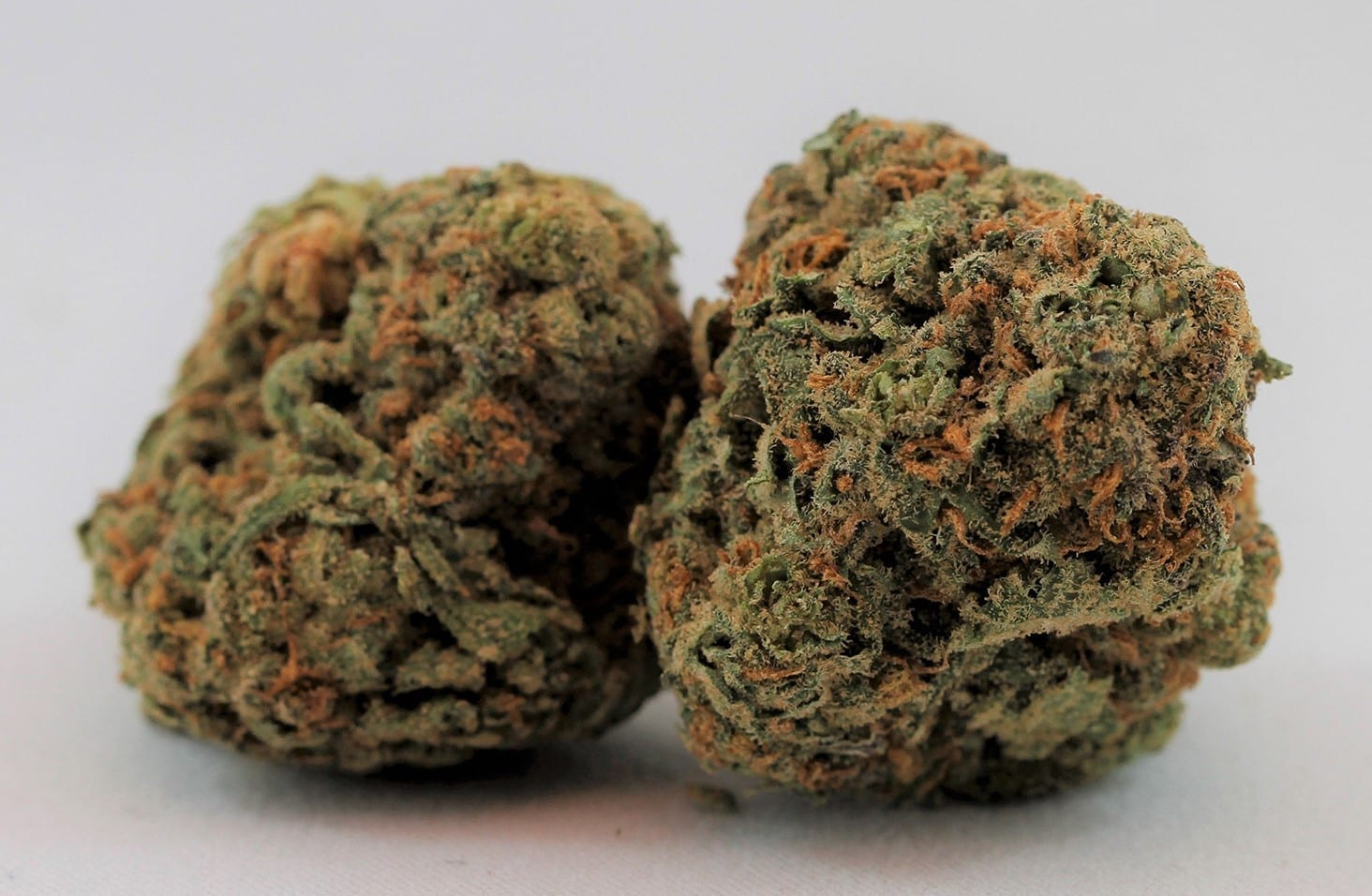 marijuana dispensary directory