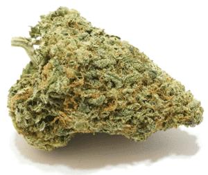 Master Yoda Cannabis/Marijuana Strain Review