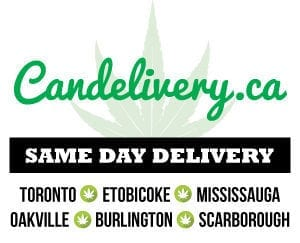 candelivery same day delivery service
