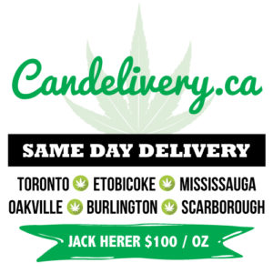 candelivery.ca offering same day delivery service