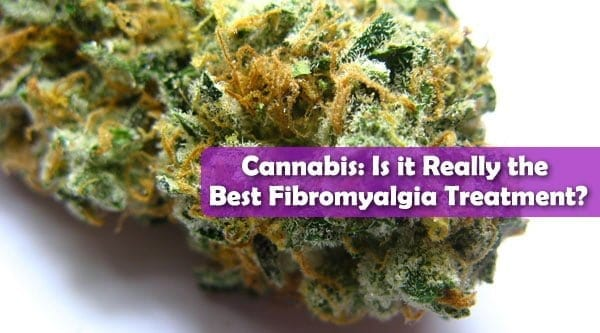 Cannabis and Fibromyalgia Treatment best header
