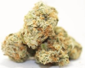 Organic super lemon haze strain weed cannabis