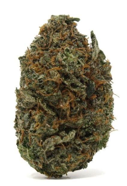 platinum kush peak 420 best strain 2018