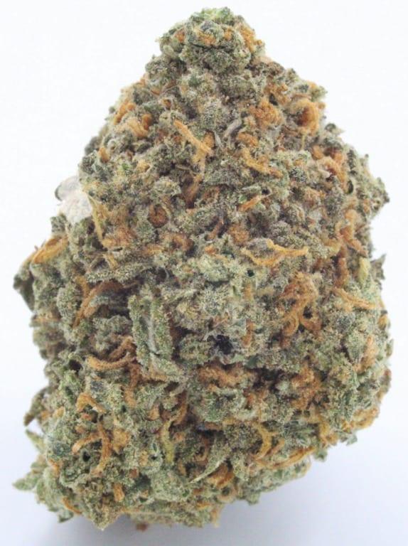agent orange strain best of