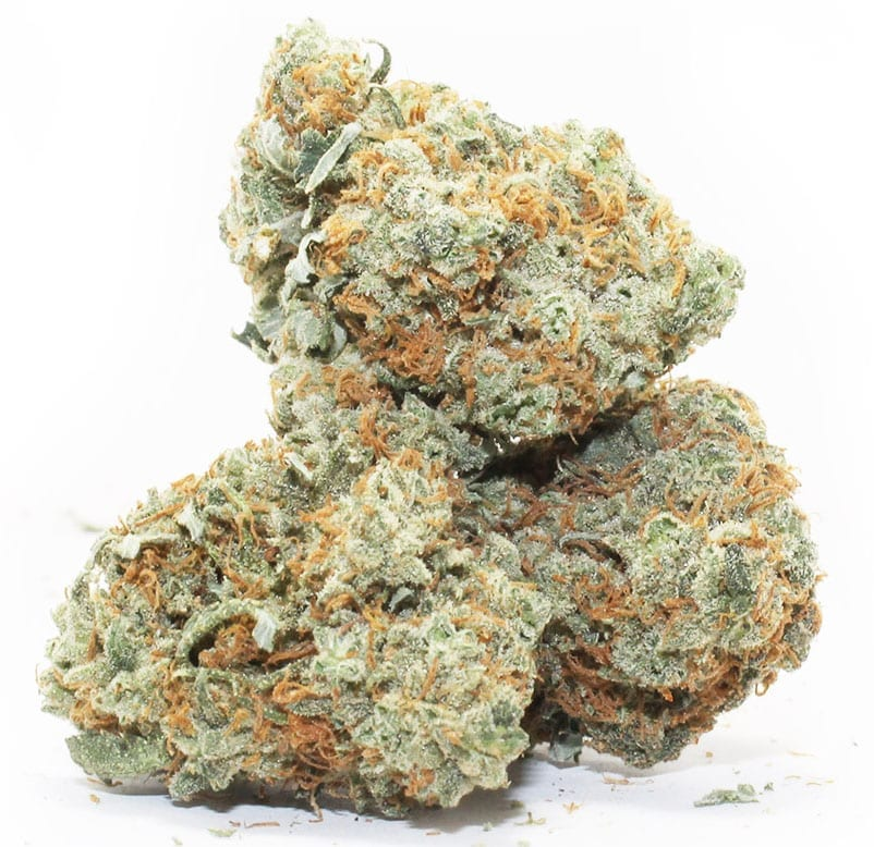Blue Magoo strain review