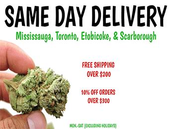 candelivery same day delivery service featured image