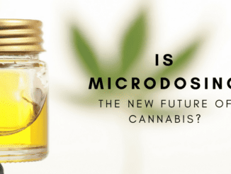 Is Mcrodosing Cannabis The New Future