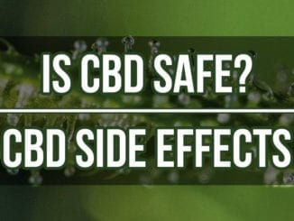 Is-CBD-Safe-CBD-Side-Effects