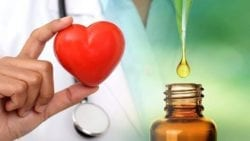 cbd heart health