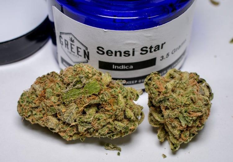 sensi star indica green society