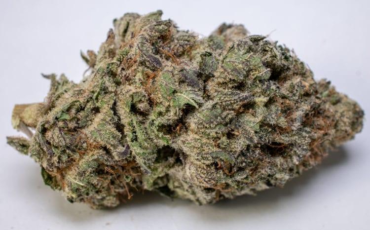 Black DIamond Speed Greens Cannabis