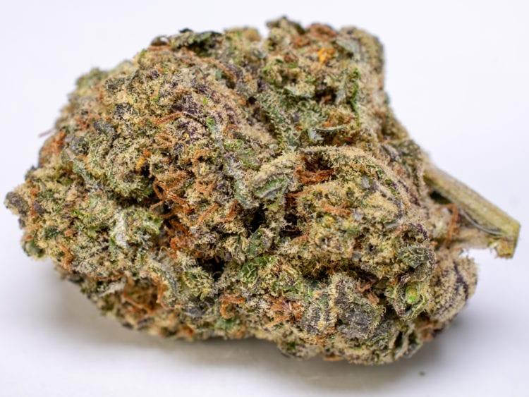 Black Roses Speed Greens Cannabis