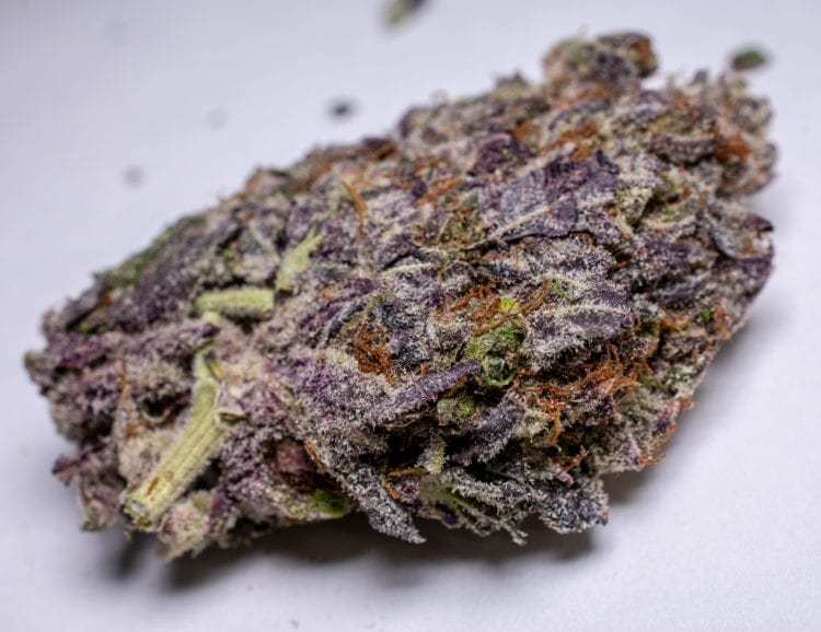 Purple Space Cookie from CannaWholesalers
