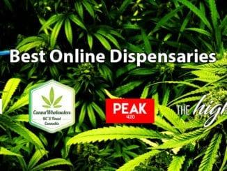 best dispensaries across canada green society cannawholesalers peak420 thehighclub