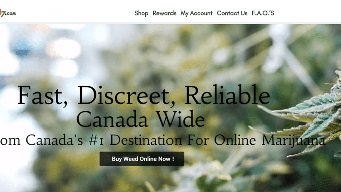 buyweed247 featured image
