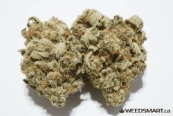 green goblin weedsmart