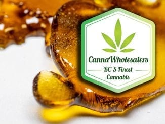 blood diamond cannawholesalers shatter
