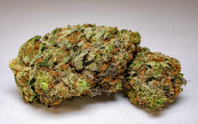 Death Bubba Strain Review BudBuddies