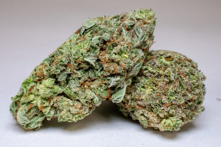 super lemon haze weed deals