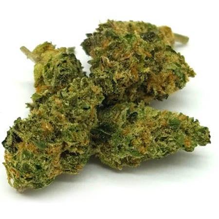 Hybrid Cannabis