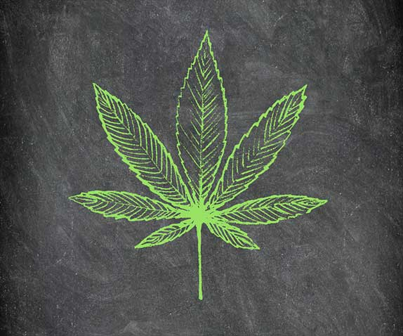 Cannabis leaf on blackboard educate