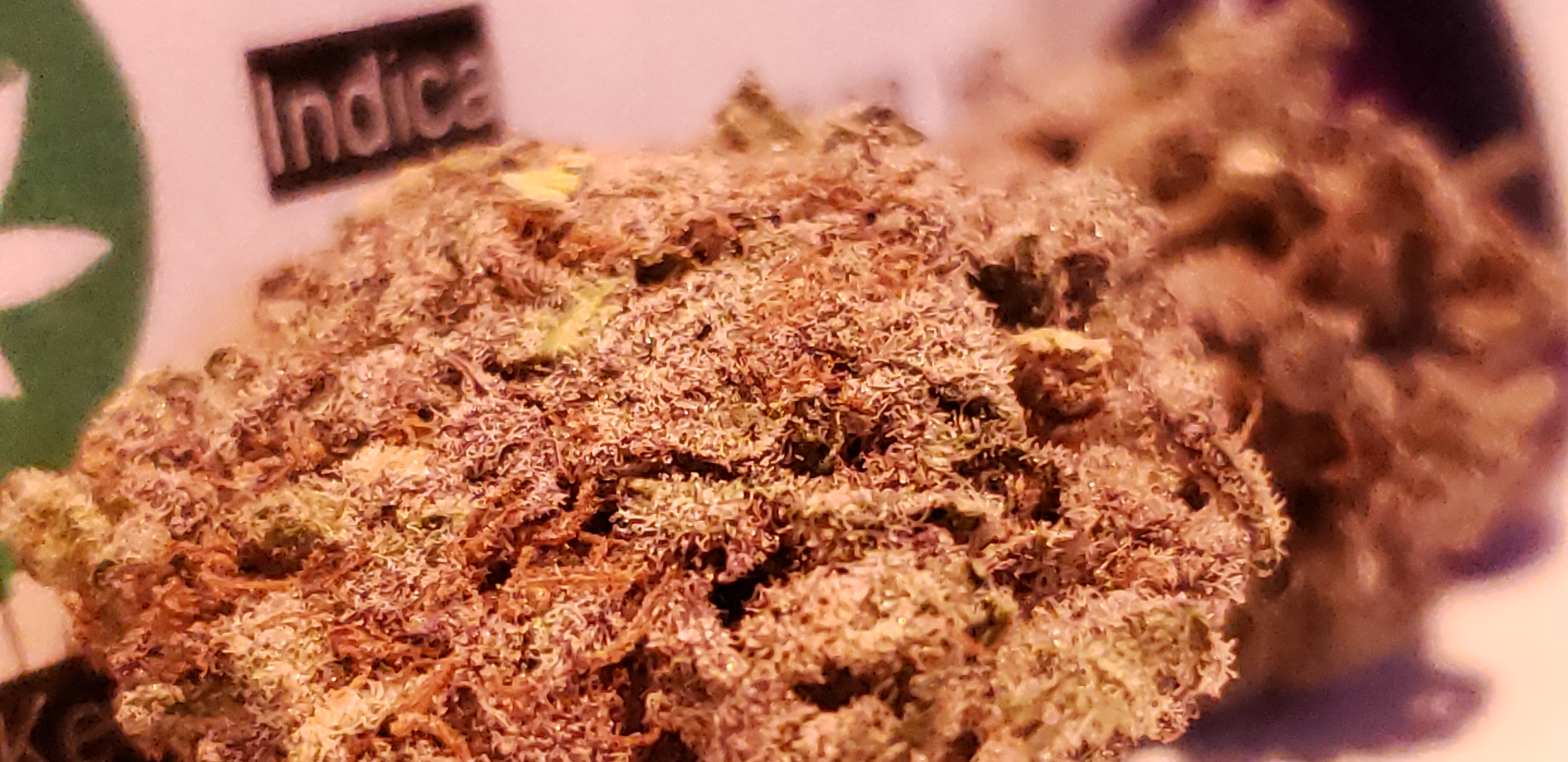 Chronic Post's Greasy Pink