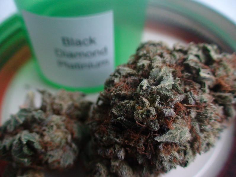 Black Diamond - Healingbuddhashop.ca