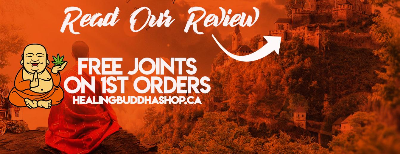 banner - healingbuddhashop.ca