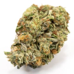 greasy bubba cannabis