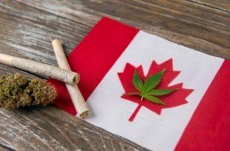 Best Online Weed Dispensaries in Canada