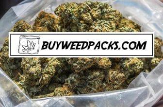 buyweedpacks bulk weed