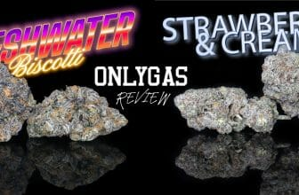 onlygas review and coupon code